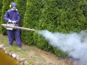 zwalczanie kleszczy w ogrodzie